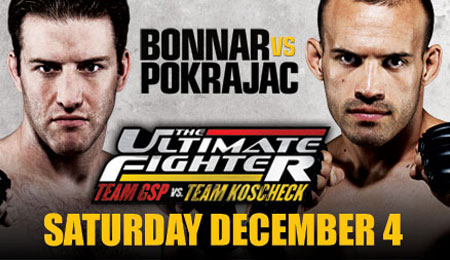Ultimate Fighter 12 Finale Poster