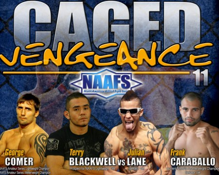 Caged Vengeance 11 Poster