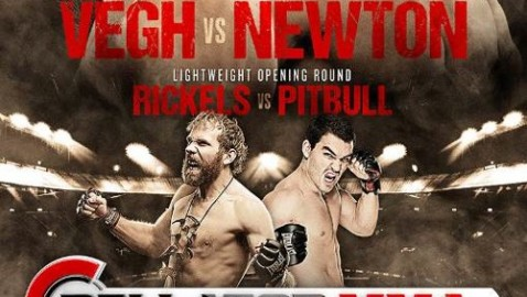 Bellator 113 Fight Poster-478x270
