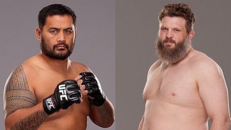 Mark-Hunt-Roy-Nelson-UFC