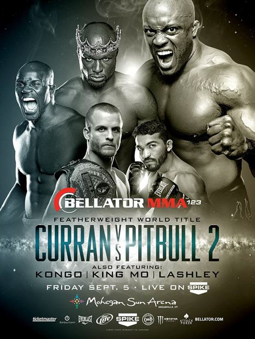 Bellator 123 Fight Poster