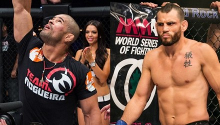 Palhares vs Fitch WSOF