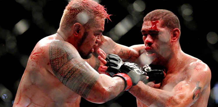 After Knocking Out Frank Mir Mark Hunt Wants High Profile