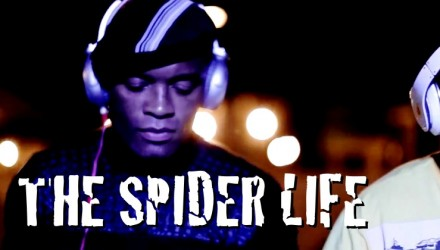 The Spider Life - 750