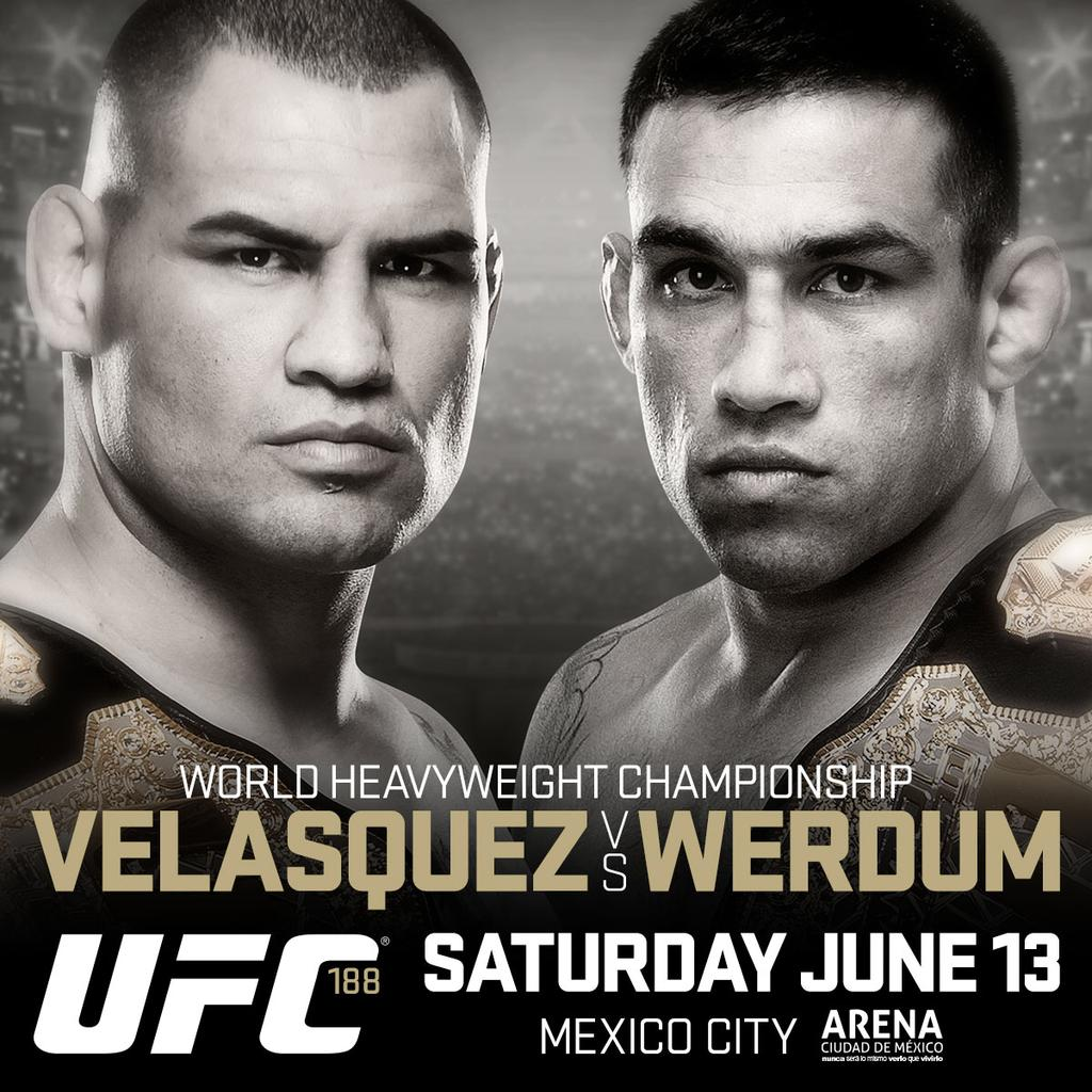 Sports betting odds ufc 188 binary options signals twitter account
