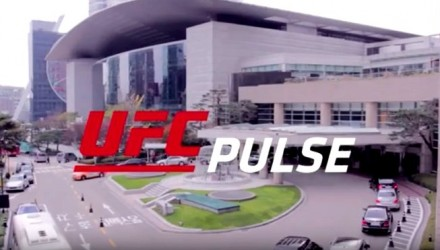 UFC Pulse Episode 3