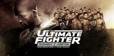 the-ultimate-fighter-24-graphic-750