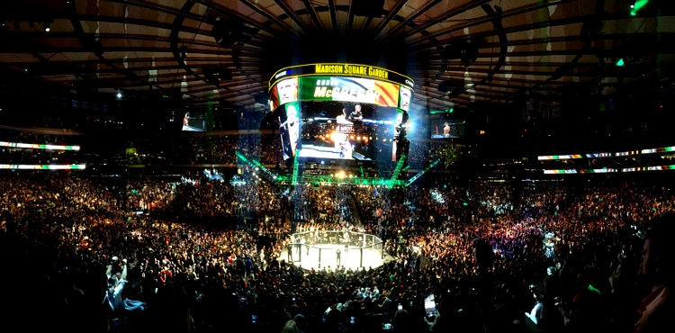 UFC 205 Madison Square Garden in the Arena