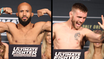 Demetrious Johnson vs Tim Elliott