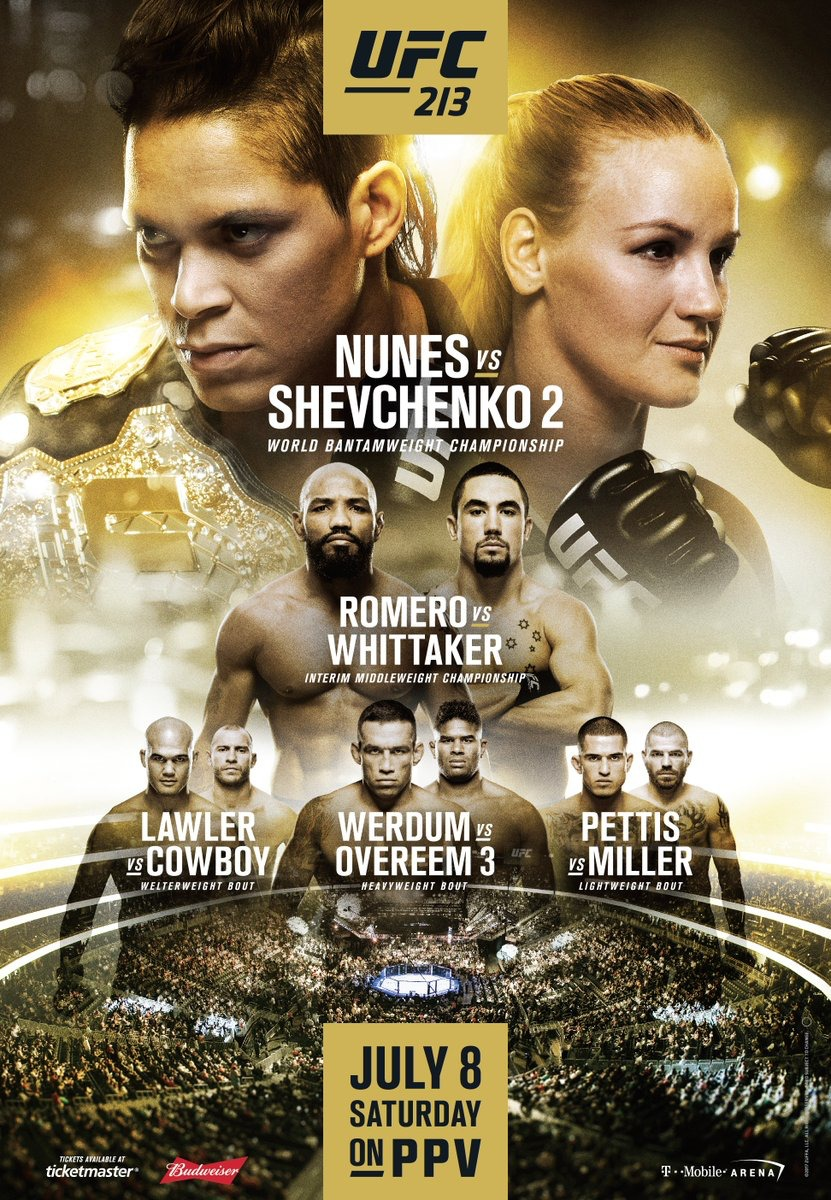 UFC 213: Nunes vs. Shevchenko 2 Official Fight Poster ...