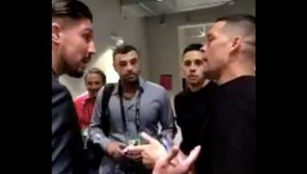 Brendan Schaub and Nate Diaz - Mayweather vs McGregor