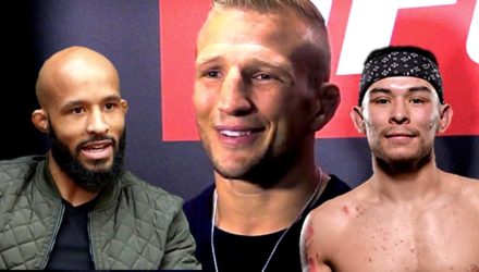 TJ Dillashaw - Demetrious Johnson - Ray Borg