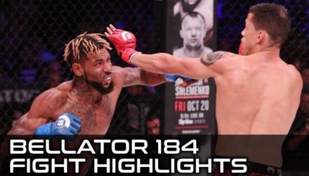Bellator 184 Fight Highlights