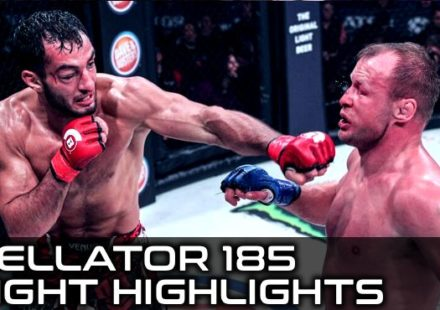 Bellator 185 Fight Highlights