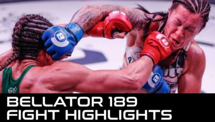 Bellator 189 Fight Highlights