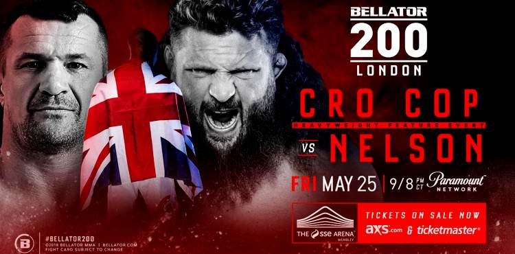 Bellator 200 Cro Cop vs Nelson Fight Poster