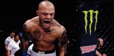 Anthony Smith UFC Hambrug preview