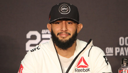 Dominick Reyes at UFC 229