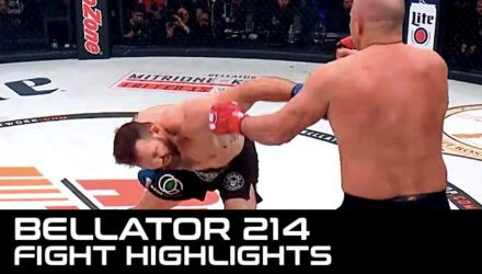 Bellator 214 Fight Highlights