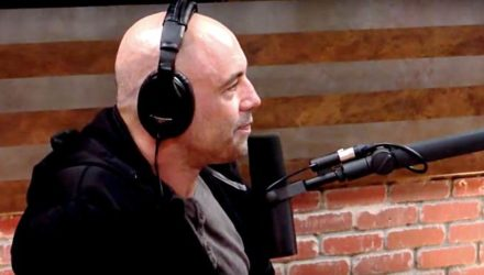 Joe Rogan - Fight Companion Podcast - Phoenix