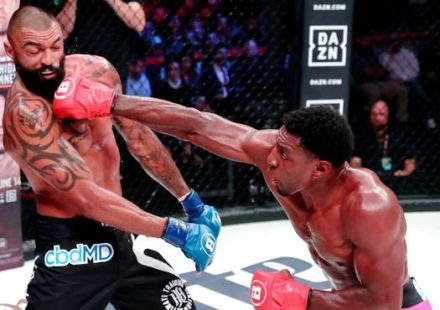 Phil Davis cracks Liam McGeary across the jaw - Bellator 220