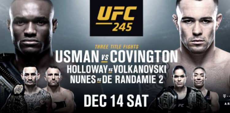 UFC 245 Usman vs Covington fight poster