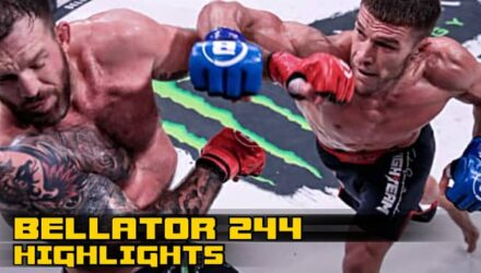 Bellator 244 Fight Highlights